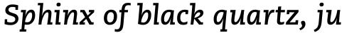 Caecilia eText Bold Italic sample