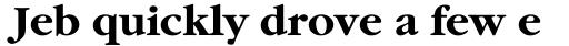 ITC Garamond Bold sample