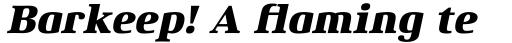 Xenois Serif Pro Heavy Italic sample
