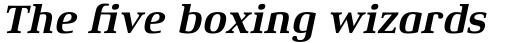Xenois Serif Pro Bold Italic sample