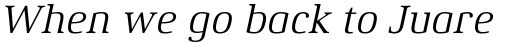 Xenois Serif Pro Italic sample