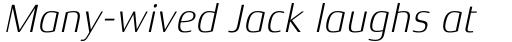 Xenois Semi Pro Light Italic sample