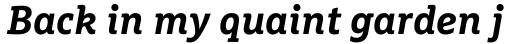 FF Marselis Slab Pro Bold Italic sample