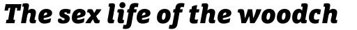 FF Marselis Slab Pro Black Italic sample