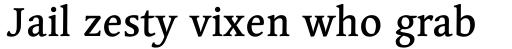 Linotype Syntax Serif Com Medium sample