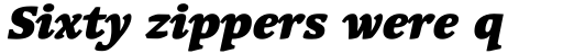 Linotype Syntax Serif Com Black Italic sample