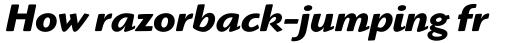 Highlander Bold Italic sample