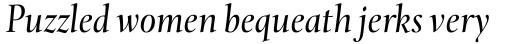 Levato Pro Italic sample