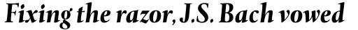 Levato Pro Black Italic sample