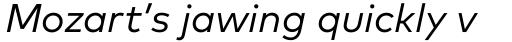 FF Mark Pro Italic sample