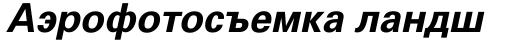 Univers Cyrillic 65 Bold Oblique sample
