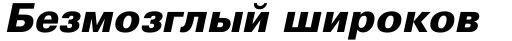Univers Cyrillic 76 Black Oblique sample