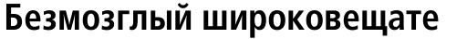Frutiger Cyrillic 67 Bold Condensed sample