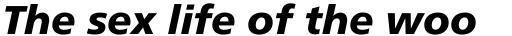 Frutiger Cyrillic 76 Black Italic sample