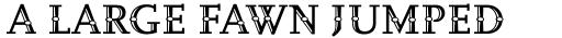 FF Scala Jewel Pearl Pro sample