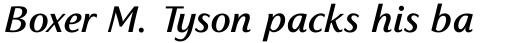 Sassoon Primary Com Medium Italic sample