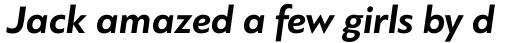 PF Bague Sans Pro Bold Italic sample