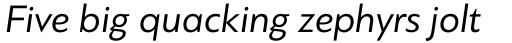 PF Bague Sans Pro Italic sample