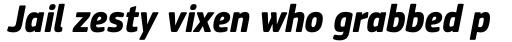 PF Square Sans Cond Pro Bold Italic sample
