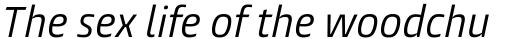 Burlingame Cond Italic sample