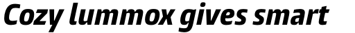 Burlingame Cond ExtraBold Italic sample