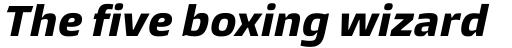 Burlingame ExtraBold Italic sample
