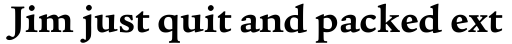 Legacy Serif Bold sample