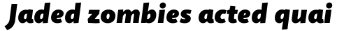 Quire Sans Fat Italic sample