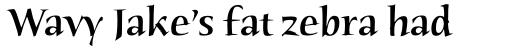 Humana Serif Pro Medium sample