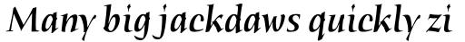 Humana Serif Pro Medium Italic sample