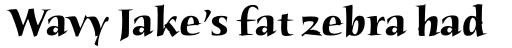 Humana Serif Pro Bold sample