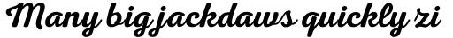 Nexa Rust Script S 1 sample