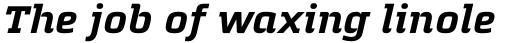 Quitador Bold Italic sample
