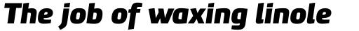 PF Benchmark Pro Black Italic sample