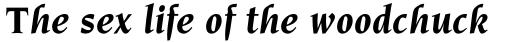 Novarese Bold Italic sample