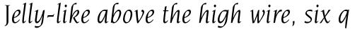 Novarese Book Italic sample