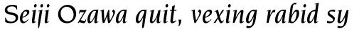 Novarese Medium Italic sample