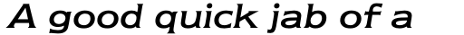 Newtext Italic sample