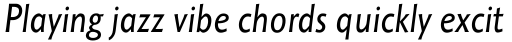 Octone Italic OS sample