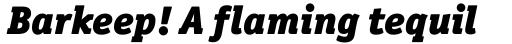 Officina Serif Black Italic sample