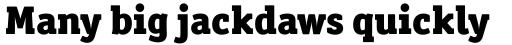 Officina Serif Black OS sample