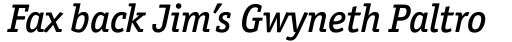 Officina Serif Medium Italic OS sample