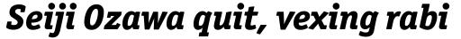 Officina Serif ExtraBold Italic OS sample