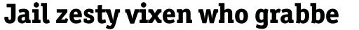 Officina Serif ExtraBold OS sample