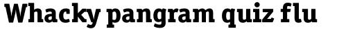 Officina Serif ExtraBold sample