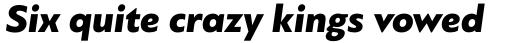 PF Bague Sans Std Black Italic sample