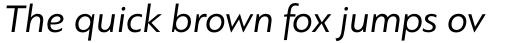 PF Bague Sans Std Italic sample