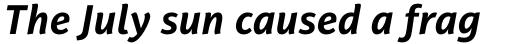 PF Adamant Sans Pro Bold Italic sample