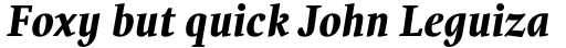 PF Occula Bold Italic sample