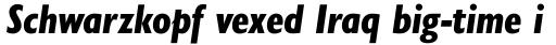 Gill Sans Nova Cond Heavy Italic sample
